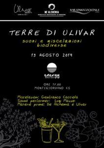 Ulivar, liquore alle olive di Calabria
